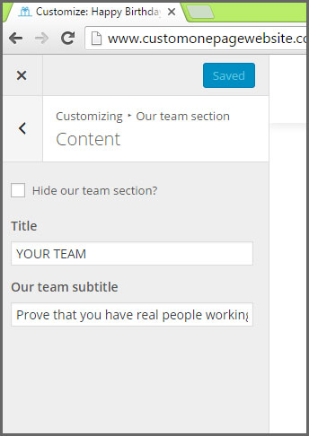 our team section content