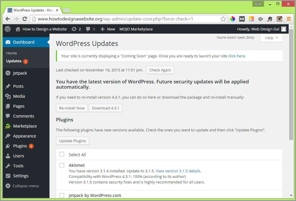 wordpress updates screen