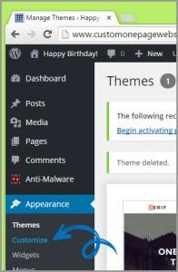 customize wordpress theme appearance