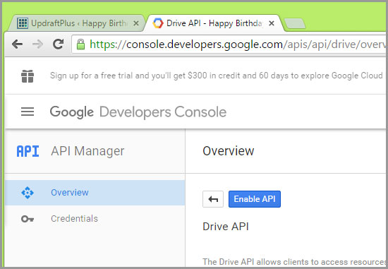 enable google api