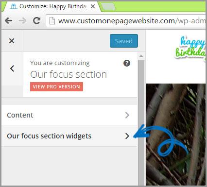 our focus section widget menu