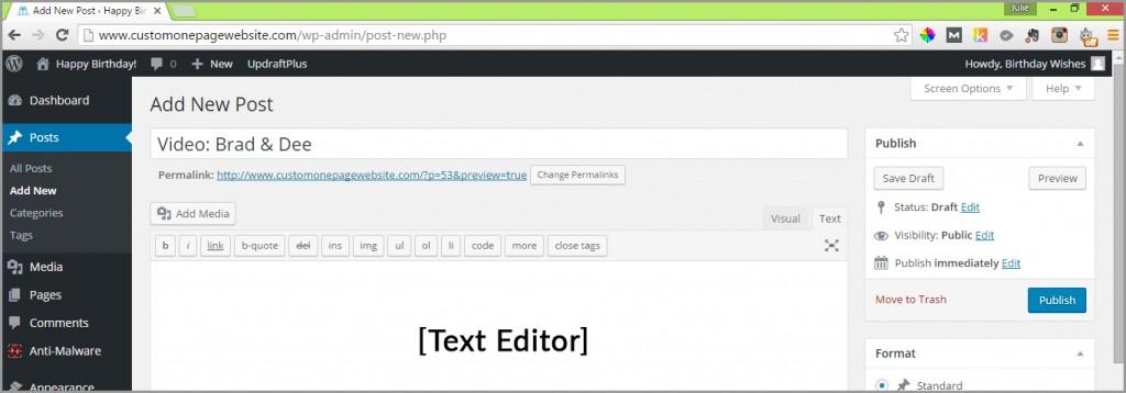 posts text editor