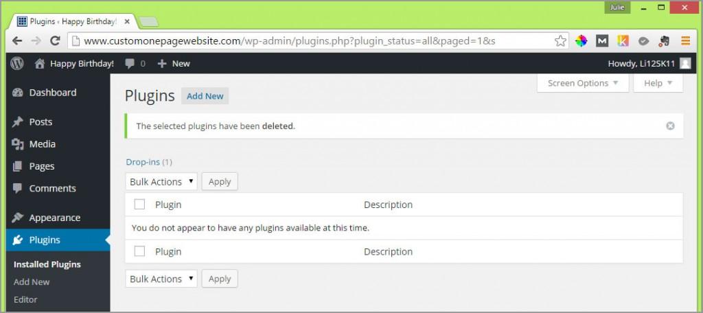 wordpress plugins deleted